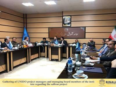 نشست مدیر پروژه های سازمان توسعه صنعتی سازمان ملل، یونیدو (UNIDO)، با ریاست و مدیران موسسه آموزش عالی بینالود